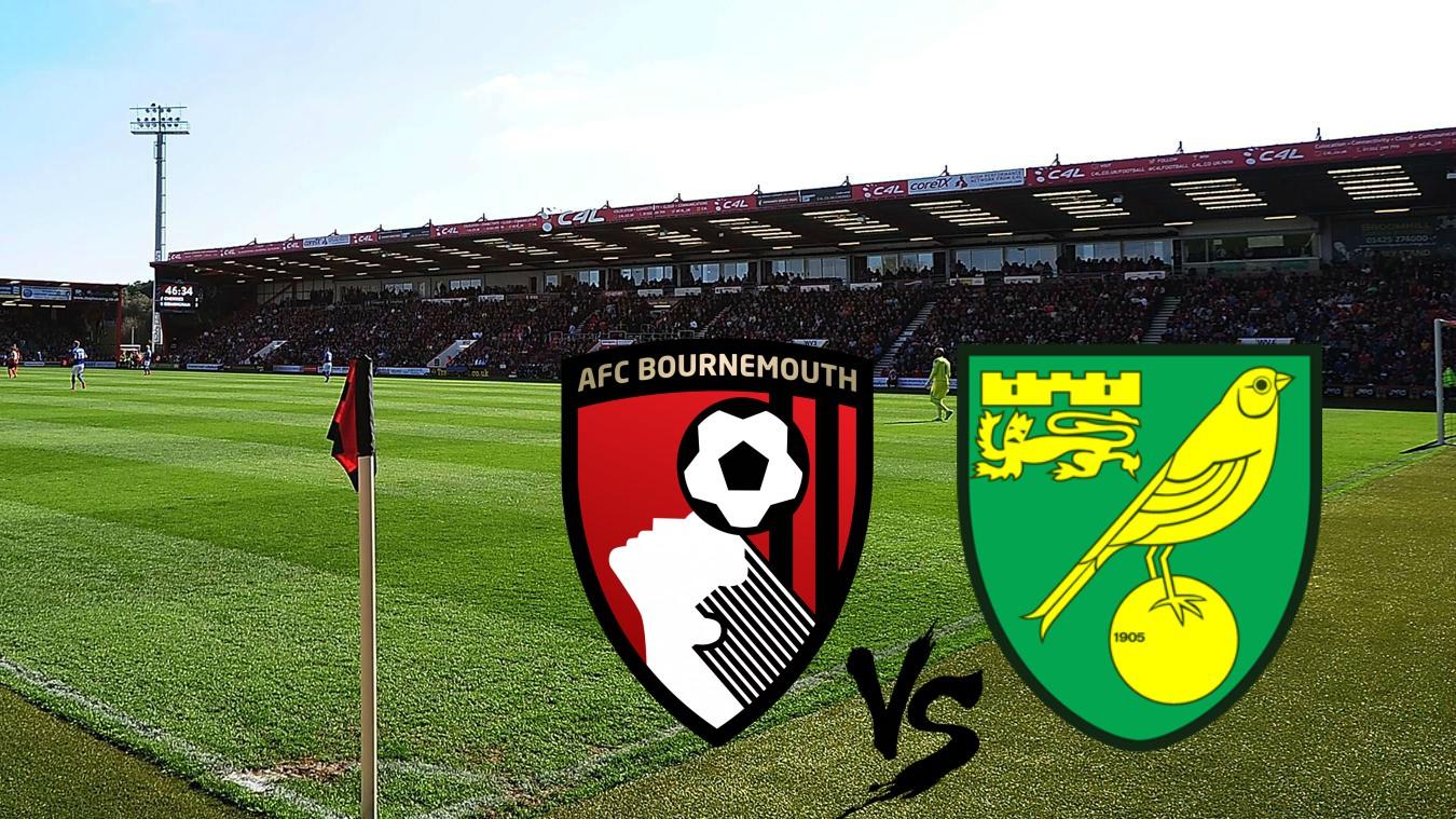 "Bournemouth – Norwich: cota excelenta la pariul ""SUB"" pe goluri! Cote de 1.76 si 1.80 pe Vitality Stadium"