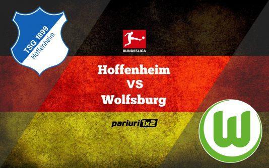 hoffenheim-wolfsburg